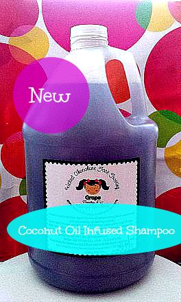 Gallon Coconut Oil Infused Shampoo