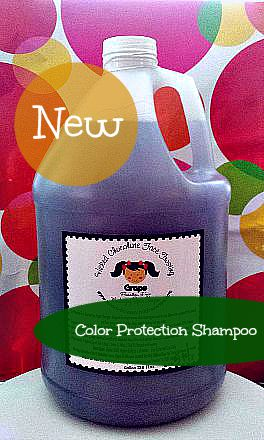 Gallon Paraben Free Color Protection Shampoo